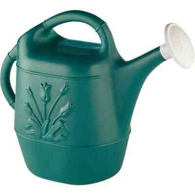 United Solutions 2 Gal. Hunter Green Poly Watering Can